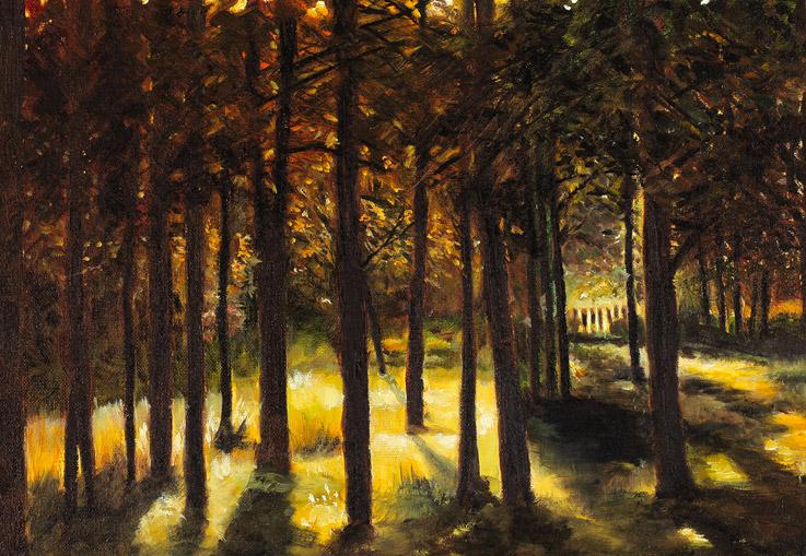 Bill Hamilton Gallery